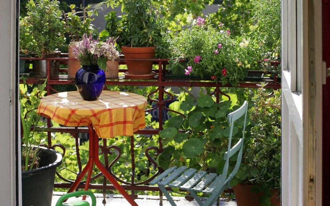 Wiosenne porządki w ogrodzie? Zapraszamy do Agro-Trade!