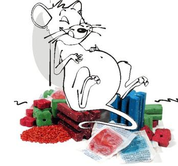 Preparaty gryzoniobójcze Murin! Skuteczne wobec myszy i szczurów!